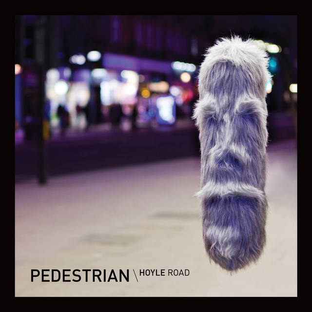 Pedestrian - Hoyle Road
