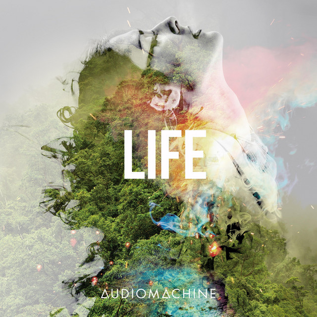 Audiomachine - Life Imitates Art